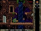 Blackthorne - screenshot #12