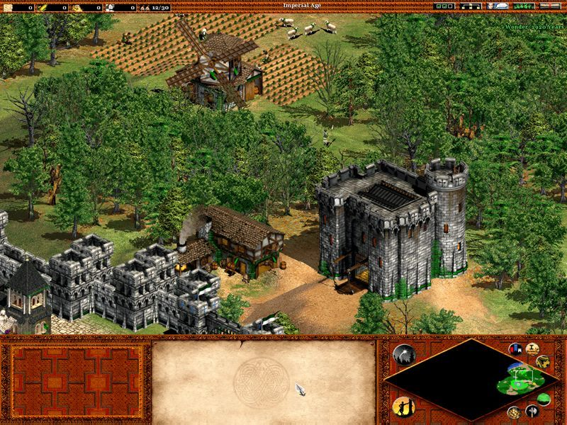Age of Empires 2: The Age of Kings - screenshot 9
